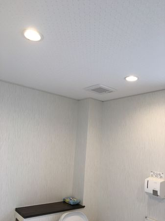 トイレ天井